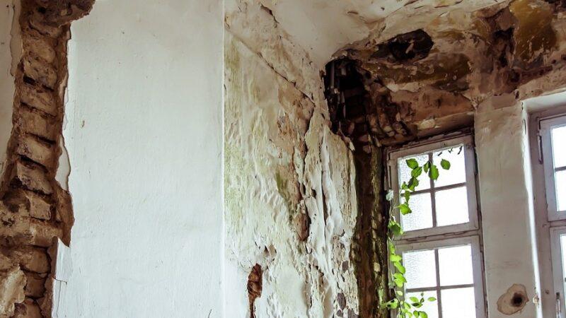 Jak się pozbyć grzyba ze ściany?