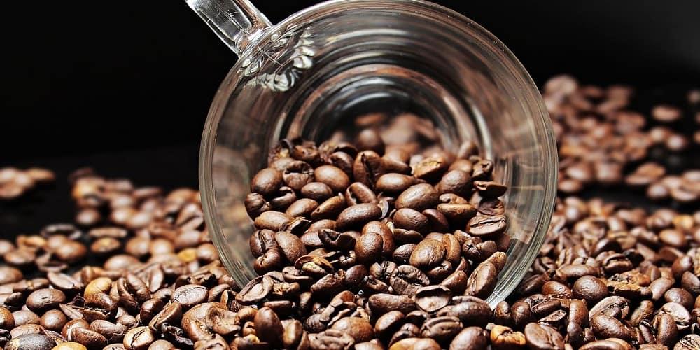 Jak odnaleźć swój ulubiony smak kawy?